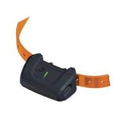 Collar Canicom 5 Adicional