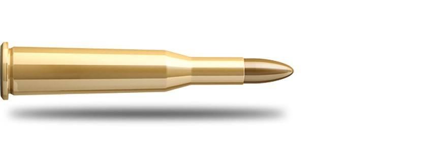 Munición Calibre 5.6x52R - Armería Online
