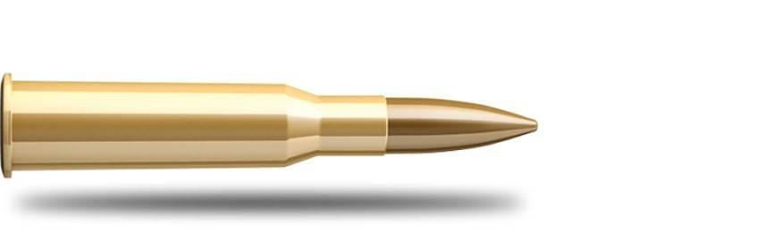 Munición Calibre 7.62x54 Russ - Armería Online